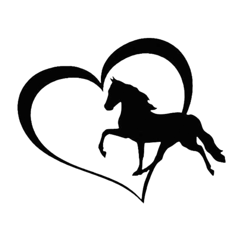 HotMeiNi 13*13 Cm Horse Love Heart Car Sticker Cartoon