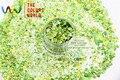 HA2104-277 Mezclado Colores Verde Manzana en Forma de Hexágono Glitter Lentejuelas Láser Holográfico para uñas de gel de arte y decoración de Vacaciones de BRICOLAJE