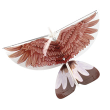Rc Planes Remote Control Airplanes Toy Hawk Parrot Cartoon Rainbow Wings Rtf Airplane Rc Air Plane Kit Toy Plastic Balsa Indoor big wings parrot toy plastic