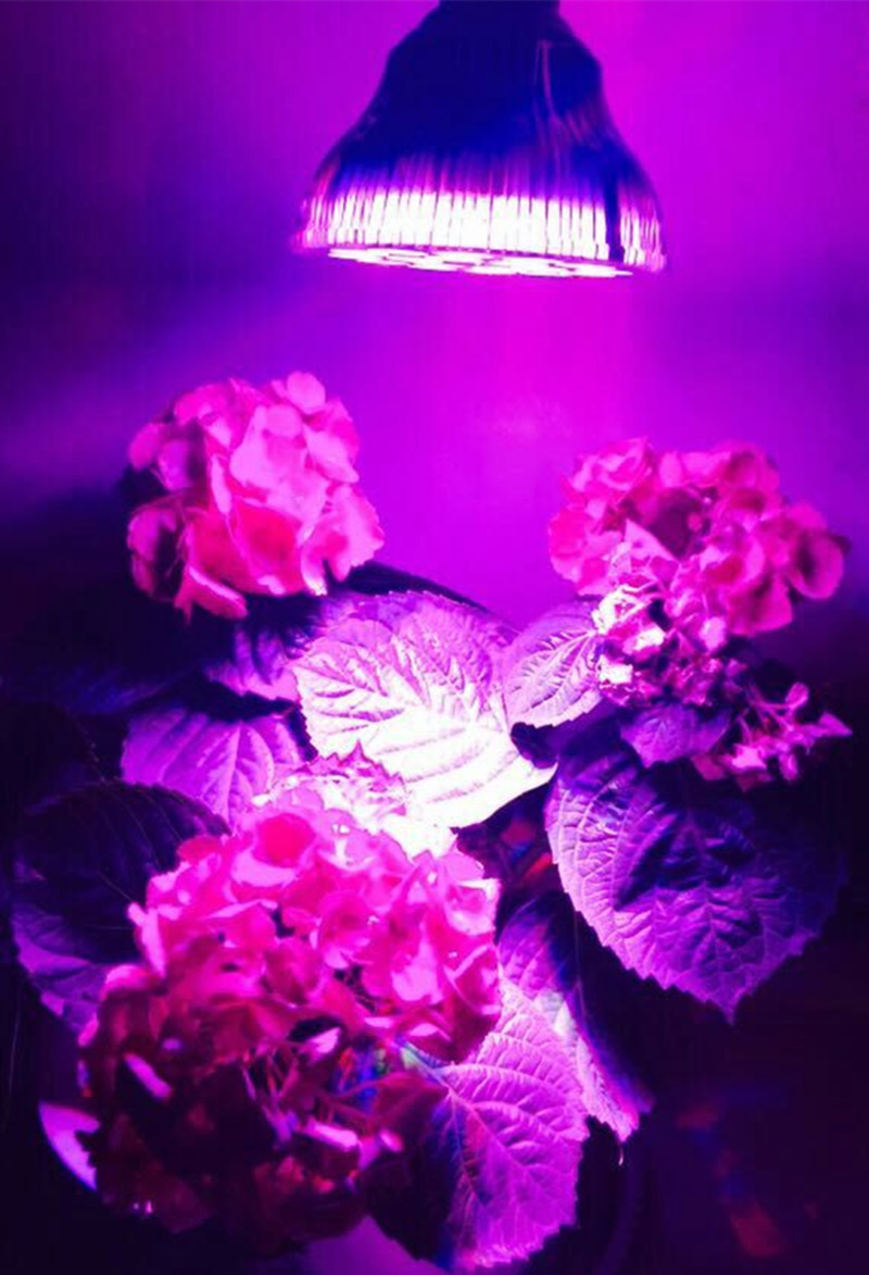 Small UFO PAR Led Grow Light 54W For Horticulture Led Grow Lighting Dropshipping