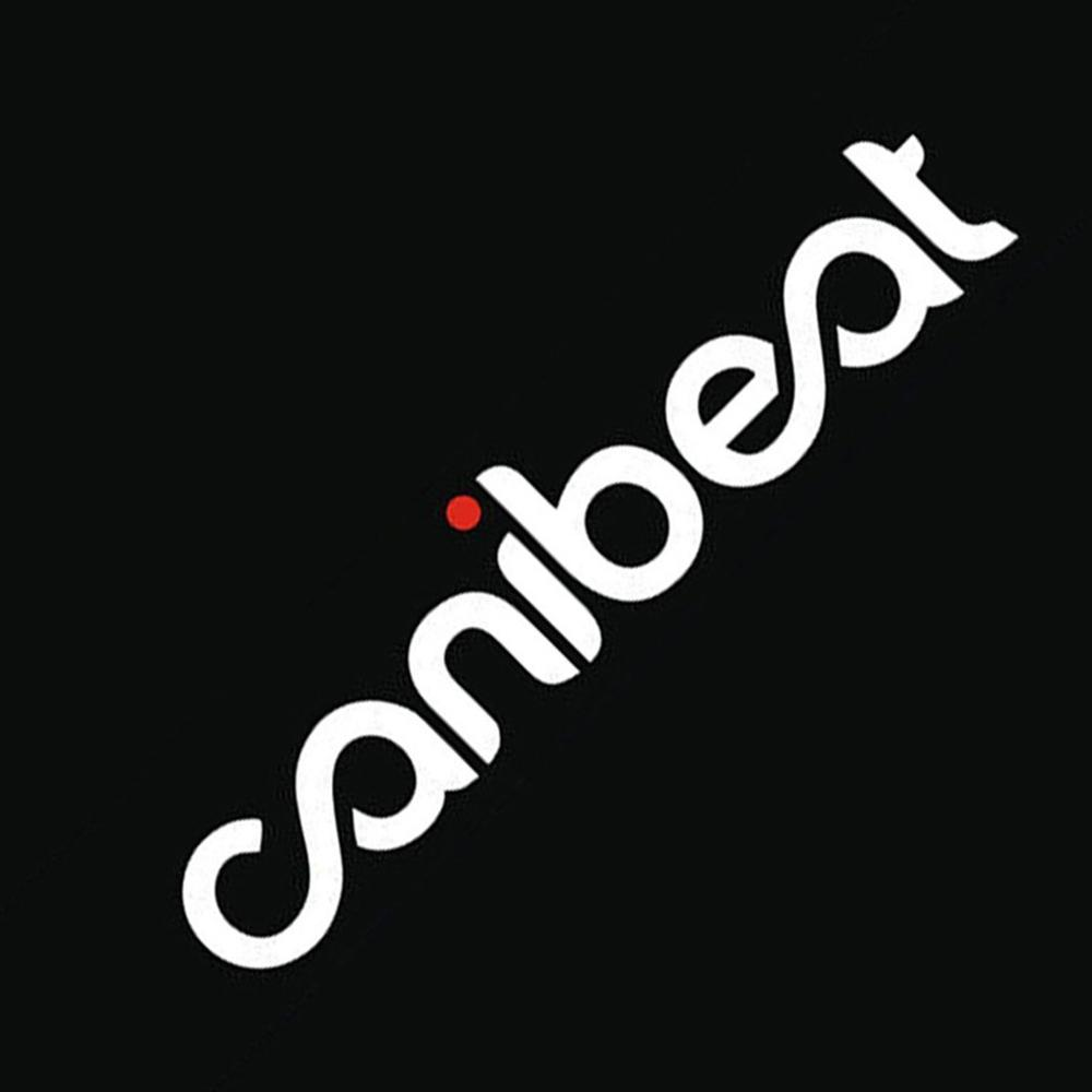 Reflective Waterproof Cool Car Styling Stickers Hellaflush Canibeat Modified Die Cut Car Sticker Windshield Decals