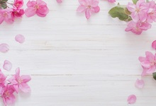 Laeacco Wooden Board Blooming Flowers Petals Food Pet Photography Background Customized Photographic Backdrop For Photo Studio