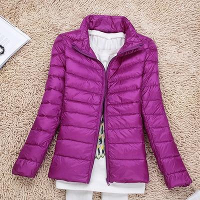 Purple Style 2