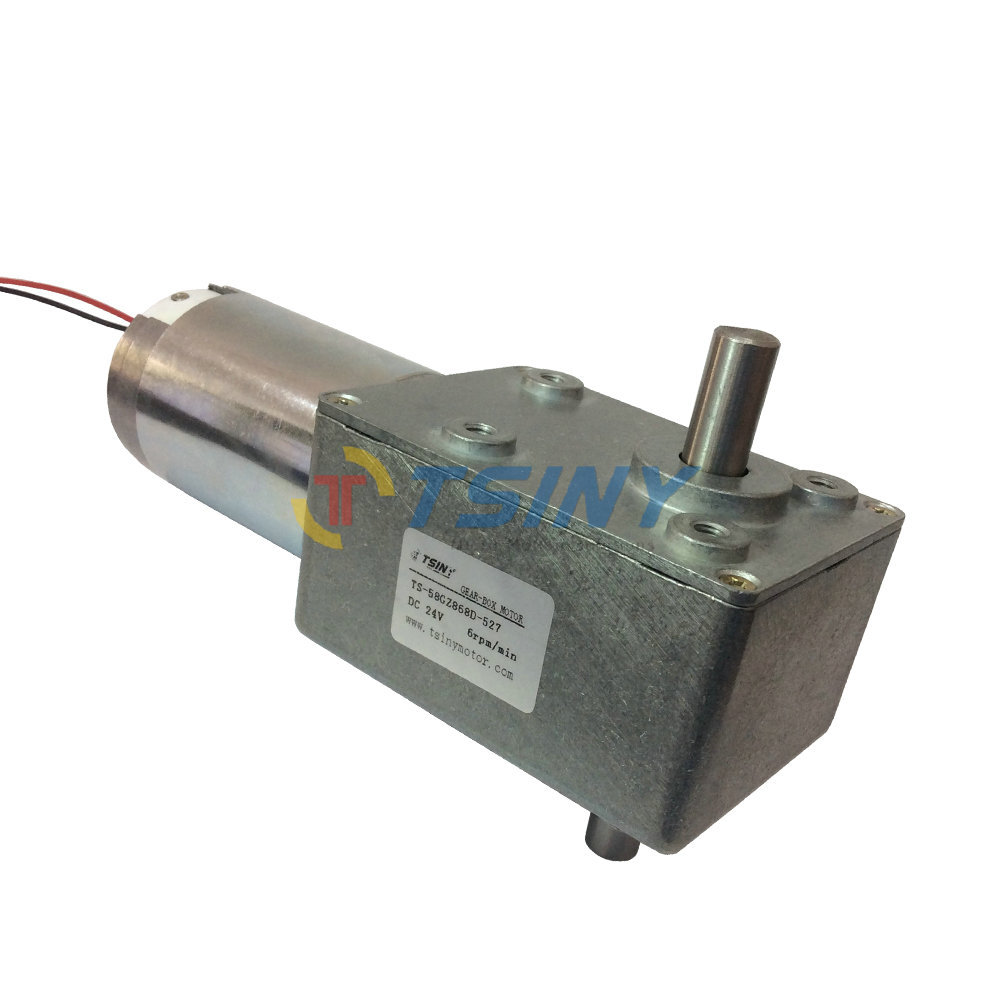 цена на High quality 24v 6rpm DC worm gear motors brush DC motor double shaft ,free shipping