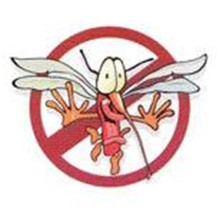 60 Pcs Mosquito Patches