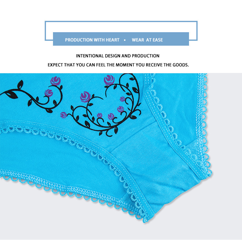FUNCILAC 5 Pcs/set New Women's cotton panties Girl Briefs Ms. cotton underwear bikini underwear sexy Ladies Briefs Free shipping