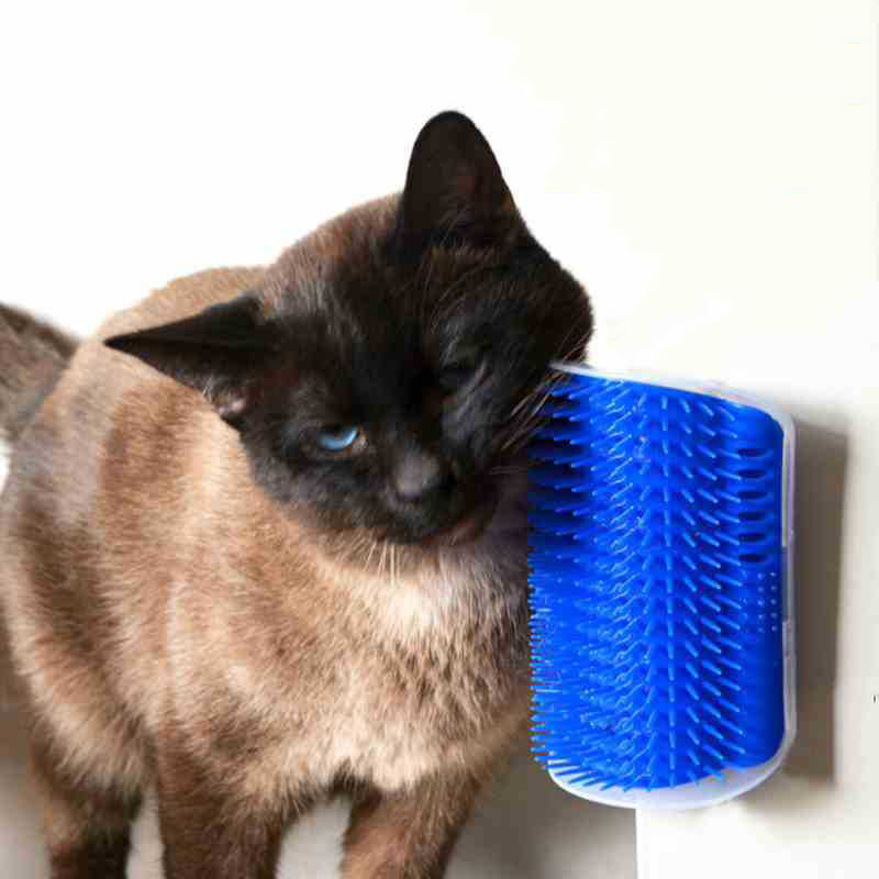 Cat Toys Kitten Pet Cat Hair Remover Brush Self Groomer with Catnip Pouch in Wall and Ta ...