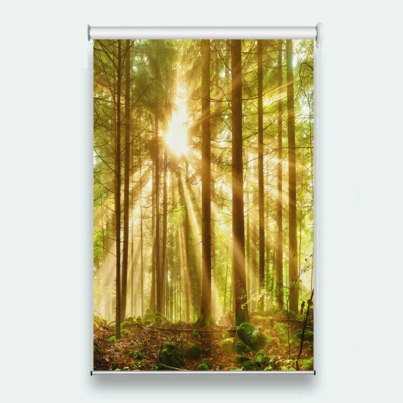 Custom Printing Blackout Shade Blinds Forest Sunscreen Window Roller Blinds For Living Room Bedroom Bead Rope Curtains