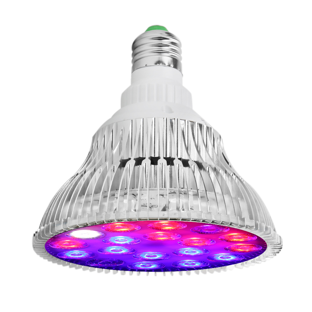 crescimento da planta lâmpada led para hidroponia