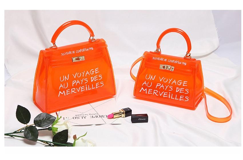 Clear Bag v3 (7)
