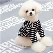 boy dog clothes_180
