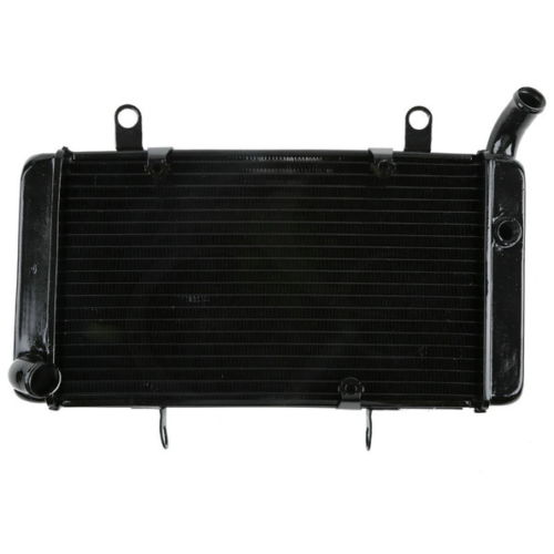 Motorcycle Replacement Radiator Cooler For HONDA CB1300 X4 1998-2003 00 01 02 AluminumMotorcycle Replacement Radiator Cooler For HONDA CB1300 X4 1998-2003 00 01 02 Aluminum