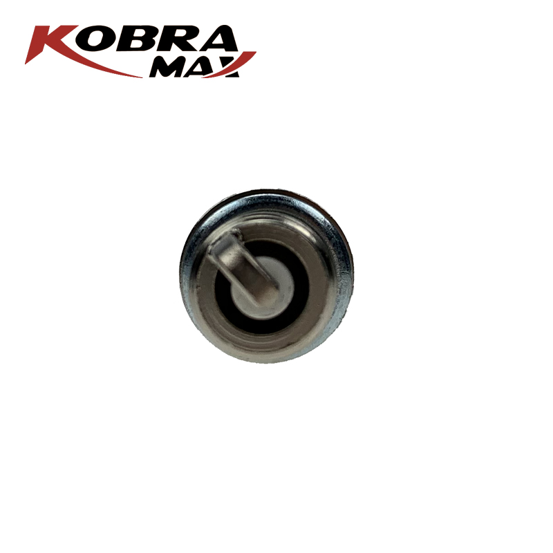 Kobramax Spot the Same Auto Professional Spark Plug Spark plug For Peugeot Citroen in Spark Plugs Glow Plugs from Automobiles Motorcycles