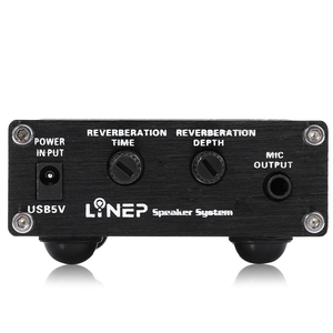 Image 3 - مكبر صوت مسبق من lyneبولوياو بملف متحرك ، ميكروفون ثنائي القناة ، وهو مناسب مع وظيفة مفتاح صدى