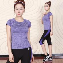 Hot Sale Breathable Solid O-neck Quick Dry Running Set Plus Size T Shirt Pants Tracksuit Women Sport Suit Yoga Set
