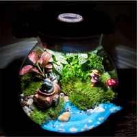 Multi-function CreativeTerrarium Glass Containers Flower Landscape Bottle With LED Light Home Garden Wedding Party Decoration