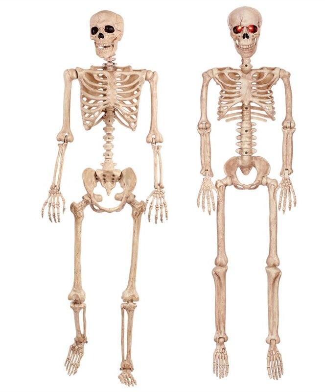Moquerry squelette humain crâne corps complet Halloween squelette corps accessoires pour la meilleure décoration de fête à la maison Halloween