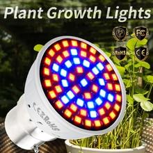 E14 Plant Grow Light Full Spectrum LED E27 220V GU10 Lamp MR16 2835 Bulb 48 60 80leds For Plants B22
