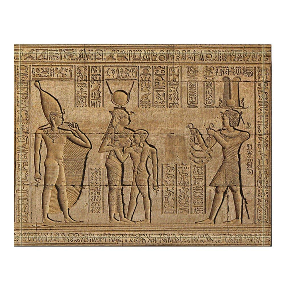 Hieroglyphic Carvings on the Exterior Walls of an Ancient Egyptian Temple  Bath Rugs,Non-Slip Outdoor Indoor DoorMat Bathroom Rug