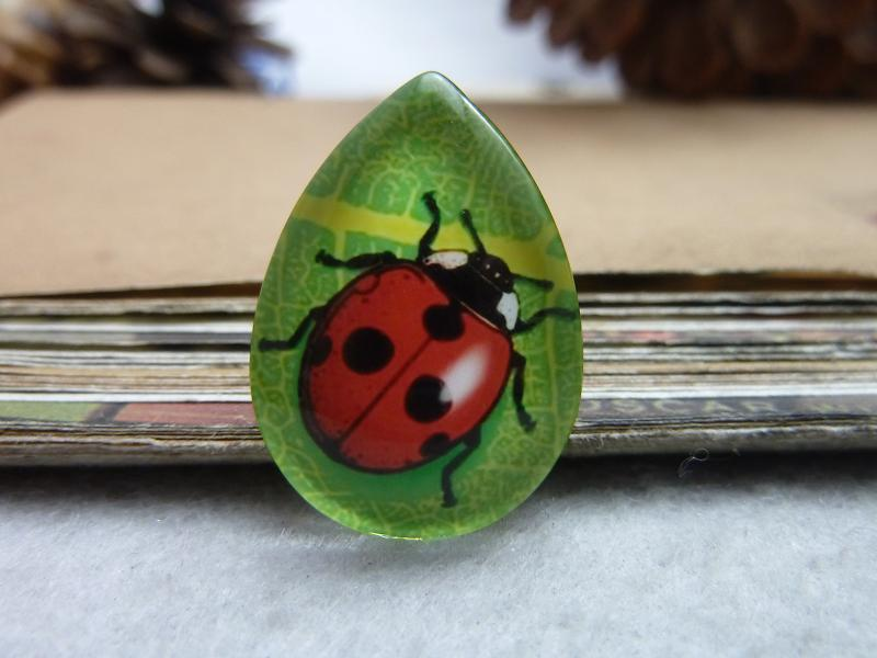 6pcs 18x25mm Handmade Photo Teardrop Glass Cabs Cabochons ( (Insect - Ladybug Beetle) GDA3-13
