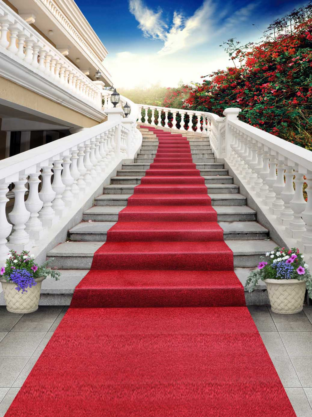 Compare Prices On Red Carpet Entrance Online Shopping Buy