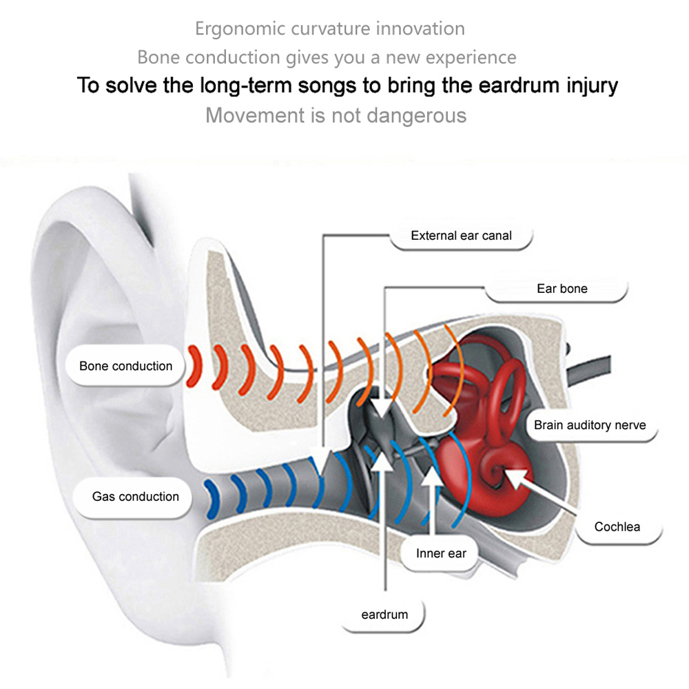 1 bone conduction headphone 1 pair of foam ear plugs 1 usb cable 1 user manual 8 languages version  [ 1000 x 1000 Pixel ]