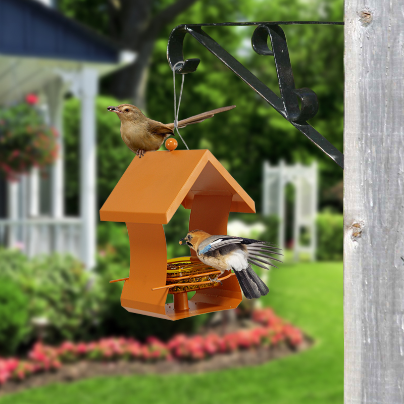 Gardening Supplies Pet Food Bird Supplies Plants: Bird Feeder Outdoor Pet Wild Food Container Park Garden