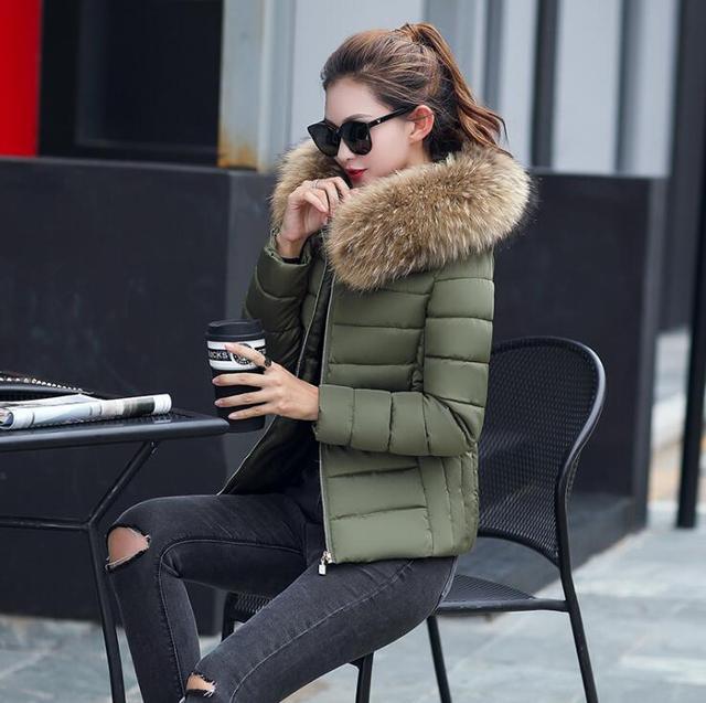 2018 Vrouwelijke Jas Herfst Met Bontkraag Capuchon Katoenen Gewatteerde Winterjas Vrouwen Korte Uitloper Basic Jacket 3