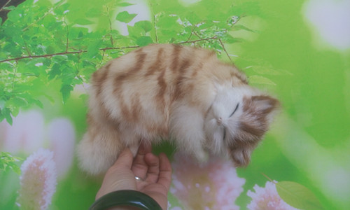 new simulation cat polyethylene & fur sleeping cat model gift about 20x12x7.5cm173