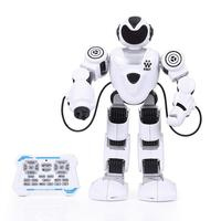 RC Rechargeable Programmable Robot Fighting Music Light Intelligent Kids Toy