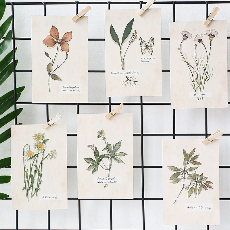 aliexpress - 30pcs/pack Flower plants sample swatch postcard - Birthday Card Sample