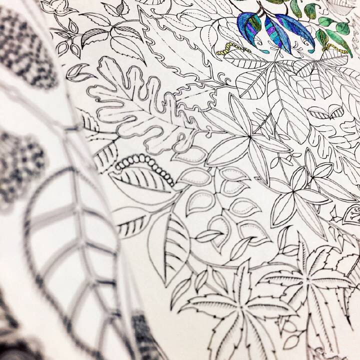 Online Shop K9003 Original Korea Secret Garden Treasure Hunt Color Book Adult Relieve Stress Relax Graffiti Painting Drawing Coloring