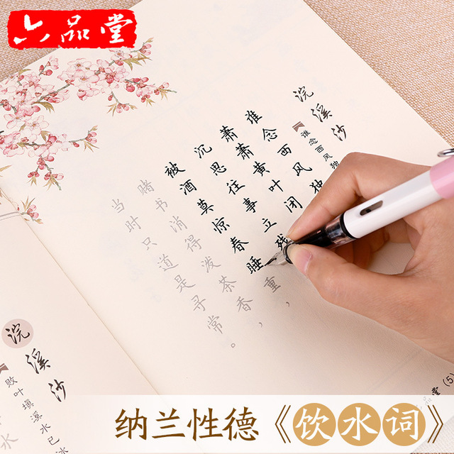 Liu Pin Tang 1pcs Hot Chinese Characters Reusable Groove Calligraphy Copybook Learn chinese Ancient pen Regular script for adult