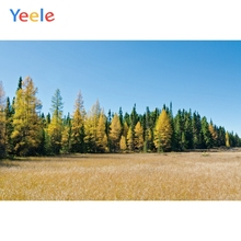 Yeele Landscape Photocall Pine Forest Grass Painting Photography Backdrop Personalized Photographic Backgrounds For Photo Studio