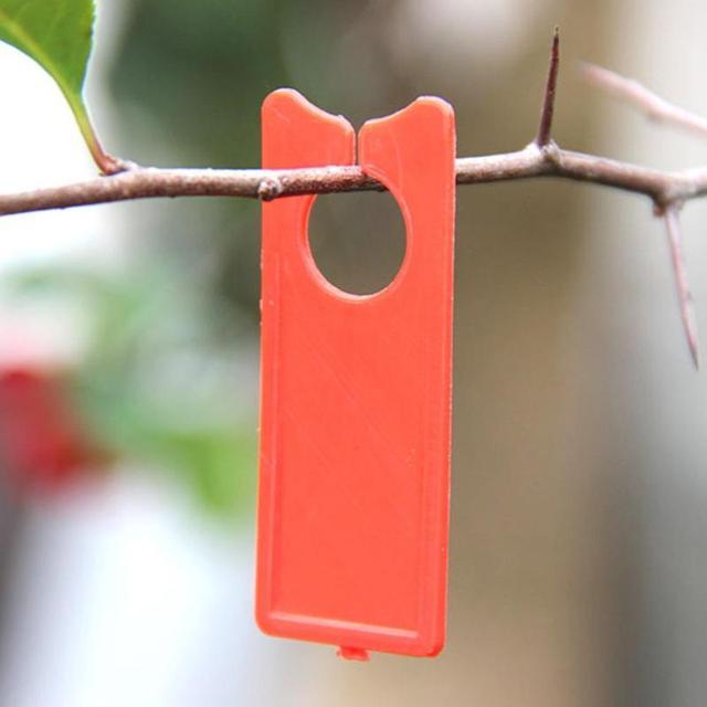100 pz Uva di Plastica Etichette Melone Frutta Tag Piante di Uva Segno Mark Pian