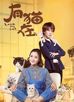 《有猫在》2018年中国大陆喜剧,爱情电视剧在线观看