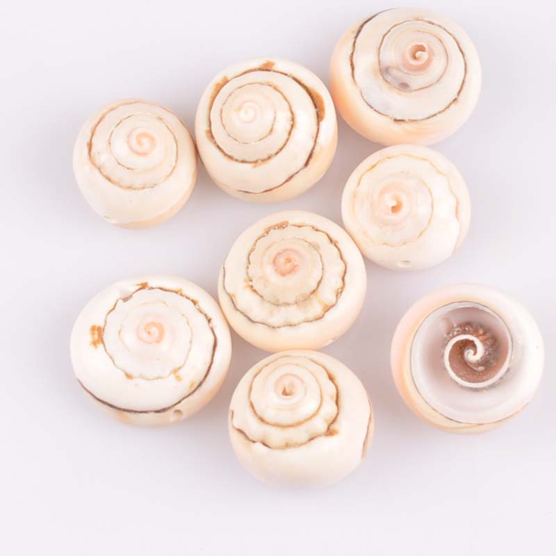 about 15mm 10pcs Natural Spiral seaShell Loose Beads for jewelry making DIY TRS0220X