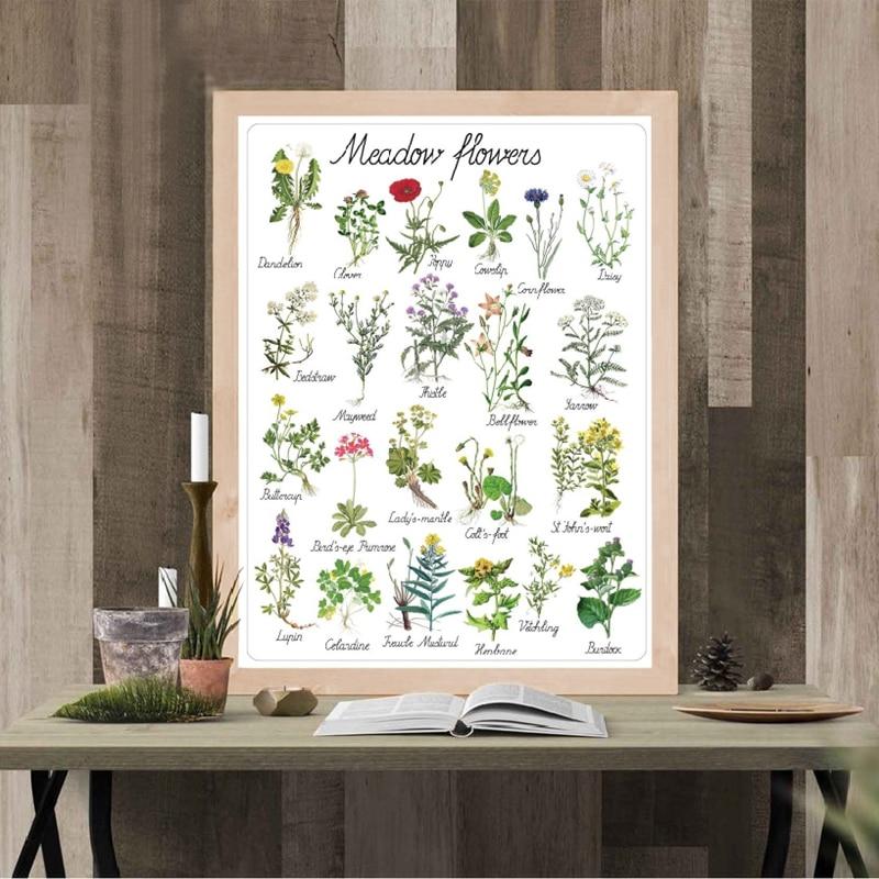Montessori Flowers Art Print