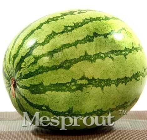 Rare Bonsai Watermelon Bonsai Super Big Water Melon  for Home & Garden NON-GMO Edible Fruits 30PCS  Fruit Water Melon Bonsai watermelon fruit