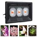 Led Wachsen Licht Gesamte Spektrum 100 W 200 W 300 W IP67 COB Wachsen LED flutlicht für Pflanzen Innen outdoor Hydrokultur Gewächshaus-in Pflanzenlichter aus Licht & Beleuchtung bei