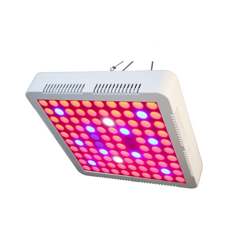 300 W LED grandir lumière spectre complet Fitolampy Phyto lampe AC85-265V plante lampe de croissance pour semis intérieur plante fleurs légumes