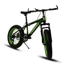 240607/20 inch / male and female student bike / 4.0 large wheel wide tires/Snow beach off-road hiking mountain bike /(China)