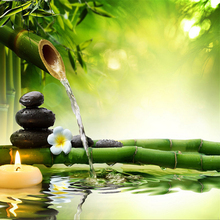 3D Photo Wallpaper  Green Bamboo Flowing Water