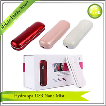 24Boxes/LOT Free Shipping USB Rechargeable Mini Portable Facial Beauty Skin Care Hydro Spa Ion Nano Mister Handy Mist Sprayer