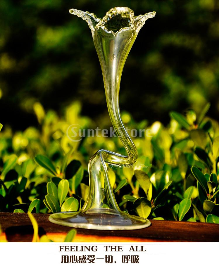 <font><b>Elegant</b></font> Waist Curves Shape Flower Glass Vase Bottle Fish Tank <font><b>Home</b></font> <font><b>Decor</b></font> Free Shipping