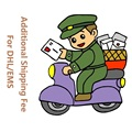 Additional Pay on Your Order Extra Fee Shipping Service Via DHL/EMS Special Link