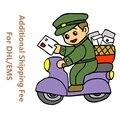 Serviço de Pagamento adicional sobre A Ordem Taxa Extra do Transporte Via DHL/EMS Link Especial
