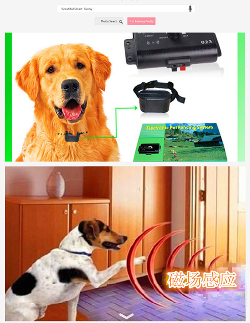 023 Safety Pet Dog Electric Fence With Waterproof Dog Electronic Training Collar Invisible Electric Dog Fence Containment System33