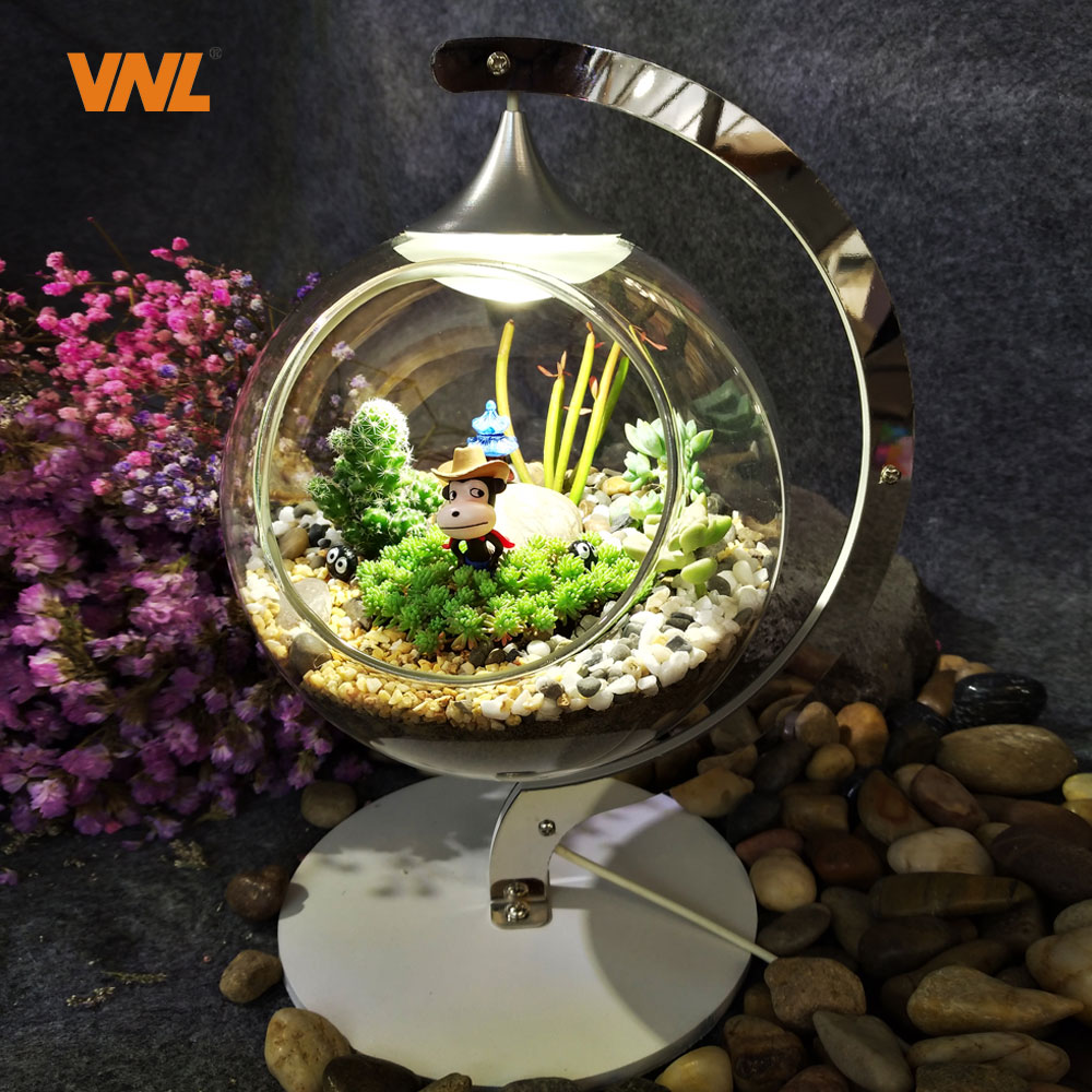 VNL LED Micro Eco Light DIY Emulated Plants or Succulents in Small World Decorate for Home and Contribute to Mental Health kermi profil k fk o 12 300 2600