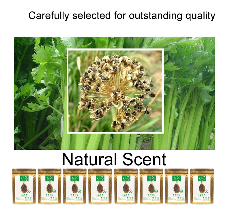 100% Pure Natural Plant Celery Seed Powder, Face Film Materials, Meal Powder, Skin Care, Proteins, 100G Calm, Anti-inflammatory